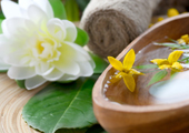 Nurturing Spa for Wellness