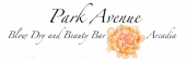 Park Avenue Blow Dry and Beauty Bar