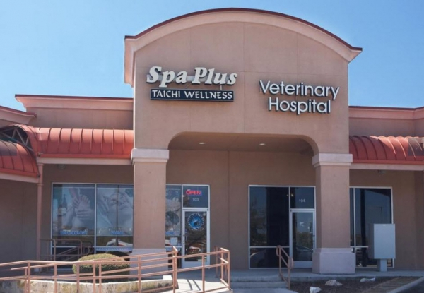 Spa And Wellness Gift Card Locations In Nc